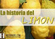 La historia del LIMON