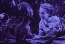 Joseph Cornell, Rose Hobart 1936