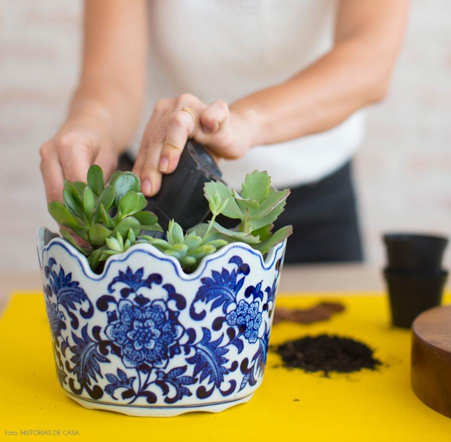 05-decoracao-arranjo-suculentas-plantas