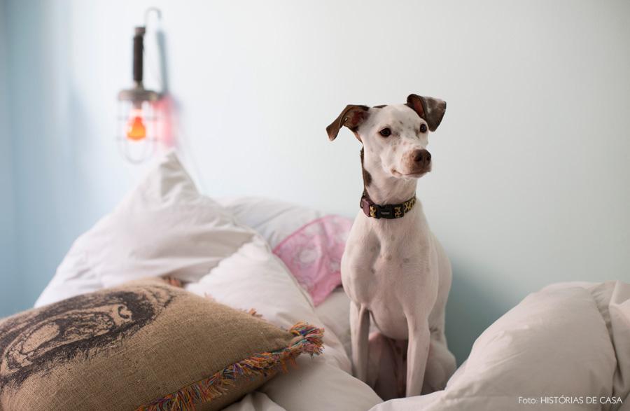decoracao-historiasdecasa-tristezinhadobem-19-cachorro