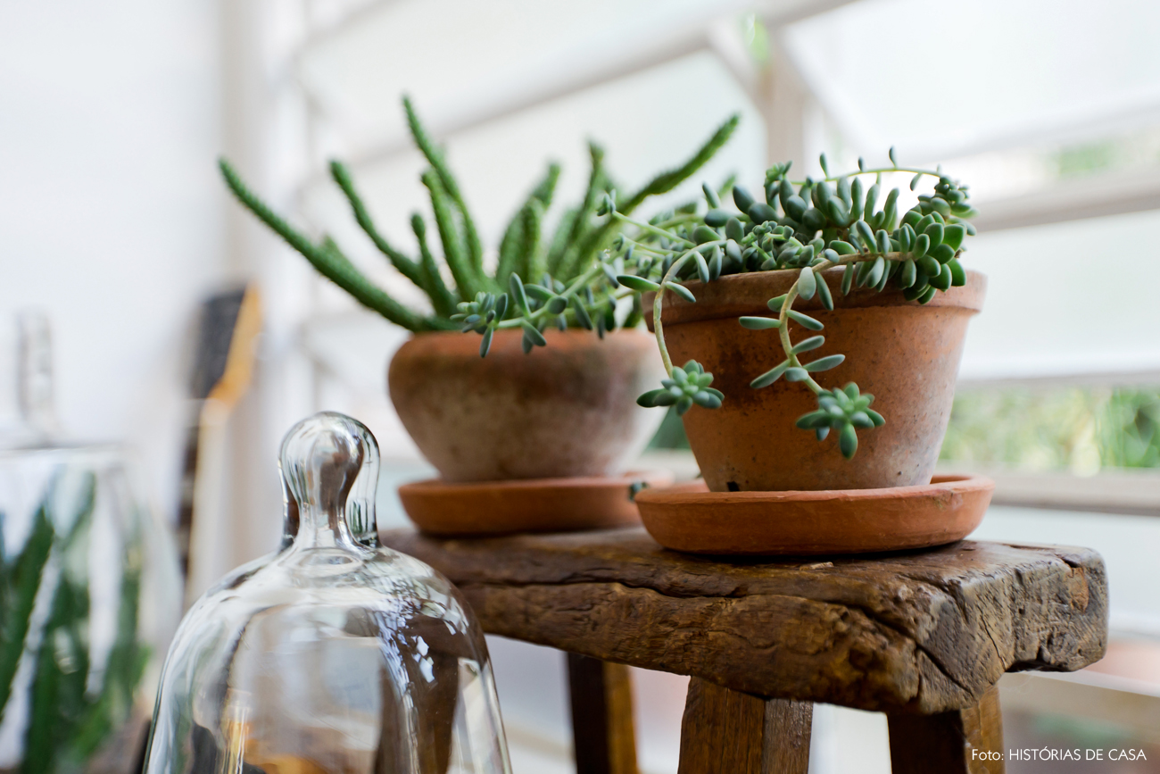 04-decoracao-plantas-dentro-de-casa-cactos-redomas-vidro