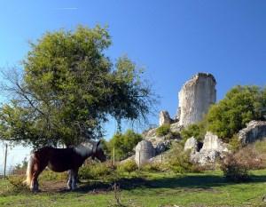 castillo-gebara-ruinas1