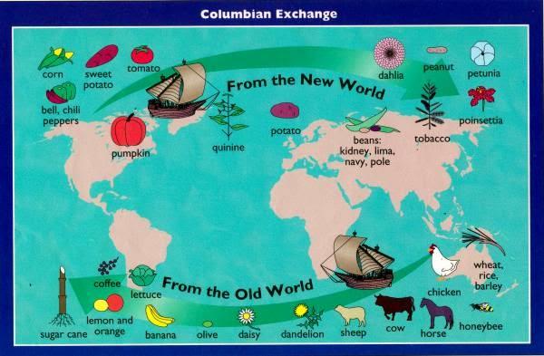Principales alimentos aportados por Amrica a la