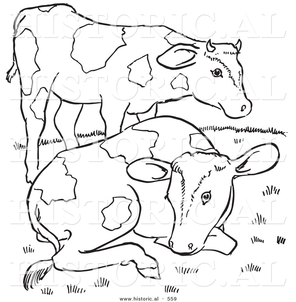 Pin Dairy-cow-coloring-pages on Pinterest