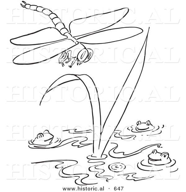 Free Coloring Pages Of Lily Pad In A Lake