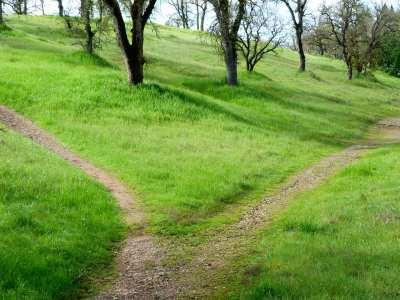 hiking-path-599
