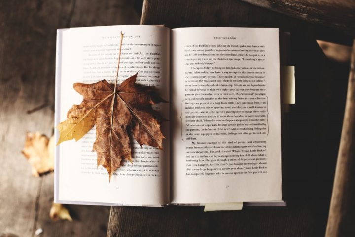 image of open book with a maple leaf as a bookmark