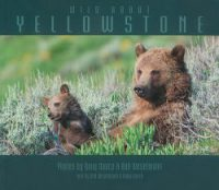 """cover image of book """"Wild About Yellowstone"""" by Doug Dance"""