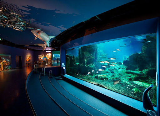 Entertainment Tour: Istanbul Aquarium Complex