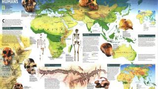 DNA World Map