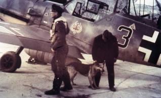An interesting shot of Oberleutnant Hermann Segatz (Staffelkapitän of 8./JG 52). His aircraft displays the Tyrolean eagle emblem.
