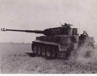 Tiger 331 Northern France 1944.