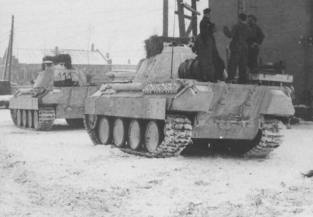 White washed winter camo Panthers.