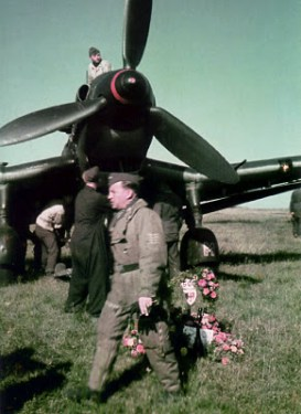 Stuka and the pilot.