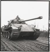 Captured Panther Tank by the Allies.
