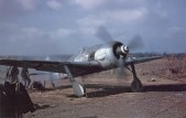 """An Fw 190 A-8/R2 in American hands. """"White 11"""" of5./JG 4was captured duringOperation Bodenplatteafter its engine had been damaged by American lightflak."""