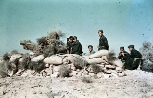 Italian artillery position with 75/27 06 gun covered with bushes as camo in the desert. Photo taken during General Erwin Rommel's Campaign in North Africa, 1941.