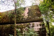 Enormous amounts of explosives were used to blow up the Wolfsschanze bunkers. Here the explosion has lifted a bunker's roof, made of 2-meter-thick solid ferro-concrete.