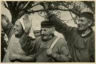 Germany Awakes. Group #32. Picture #161: Swabian farmers greet the Führer .