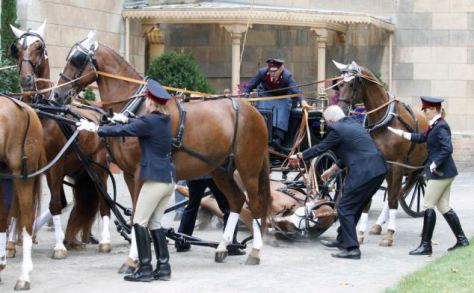A horse falls while waiting outside the Church of Peace in the grounds of Sanssouci Palace, during the religious wedding ceremony for Prince Georg Frederich of Prussia and Princess Sophie von Isenburg in Potsdam August 27, 2011.  The 35-year-old head of the House of Hohenzollern and great great grandson of Kaiser Wilhelm II married Princess Sophie, 33, in a civil ceremony on Thursday.    REUTERS/Tobias Schwarz (GERMANY - Tags: ROYALS)