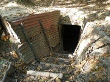 Tunnels within the trenches.