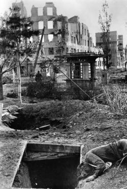 Death and destruction during the Battle of Stalingrad, October 1942.