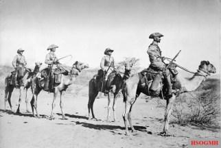 Camel patrol, German Southwest Africa, 1907.
