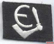 Insignia of Estonian SS Volunteer Brigade.
