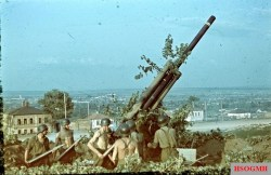 Hungarian 29M Bofors 88mm and crew at the outskirt of a Ukrainian city. Photo by Konok Tamás.