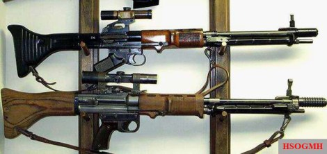 Both early (top) and late-war (bottom) variants of the FG 42.