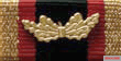 Ribbon bar of the medal.