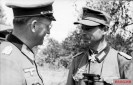 "Major General Hans Speidel in conversation with Lieutenant Colonel Josef Graßmann during the company ""Citadel""."