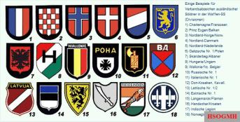 Badge of foreign volunteers.