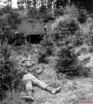 The bodies of two German soldiers lie in front of one of the Siegfried line bunkers.