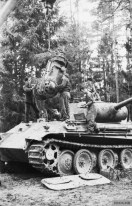 Repair of the transmission of a Panther.