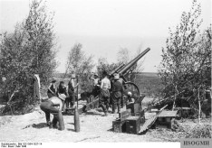 German artillery on the western front, May 1940.