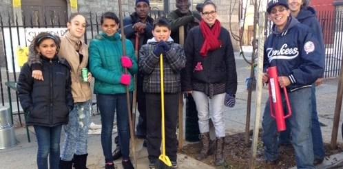 Volunteers plant trees in Fairhill