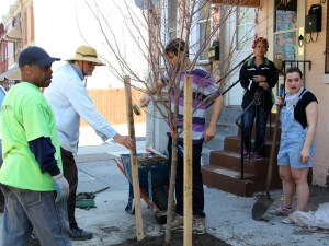 Tree Planting in Fair HIll