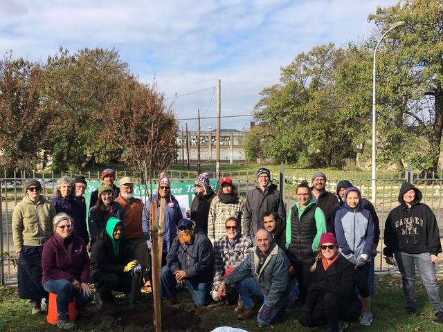tree planting crew 11/17/18