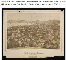 Wellington from Thorndon 1890s