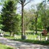 woodlandview4