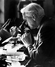 Alexander Fleming achter zijn microscoop