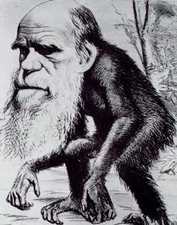 Darwin als 'aap', spotprent uit 1871