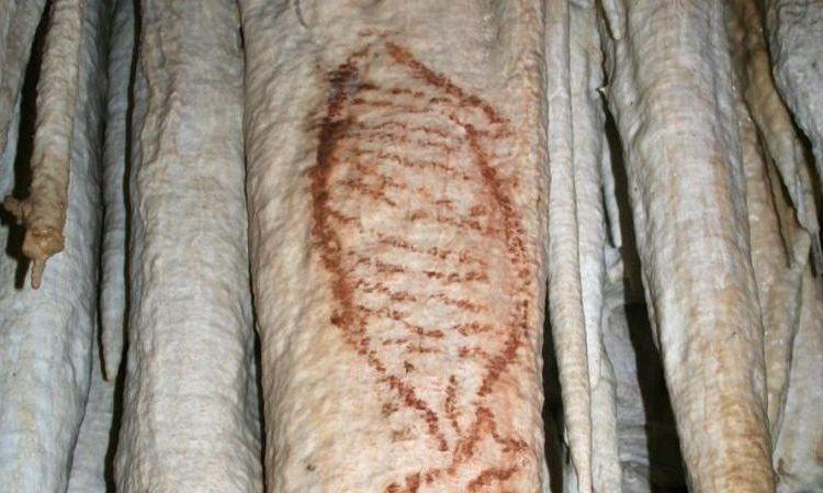 Tekening die in de grotten van Nerja is gevonden