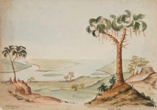 Tekening van (vermoedelijk) Tuti Island nabij Khartoem, door Alexine Tinne – Collectie Haags Historisch Museum.