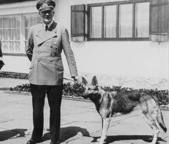 Adolf Hitler met zijn hond Blondi die hij in 1941 van Martin Bormann cadeau gekregen had