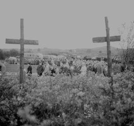 Herdenkingskruizen op de Waalsdorpervlakte, 1961 (CC-Anefo)