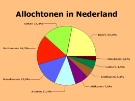 Niet-westerse allochtonen (incl. Indo's) in Nederland in 2008 (Wikipedia)