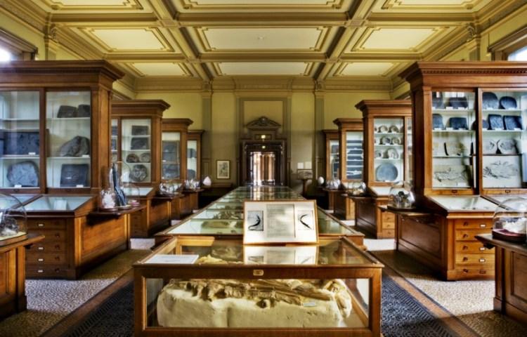 Teylers Museum, fossielenzaal - cc