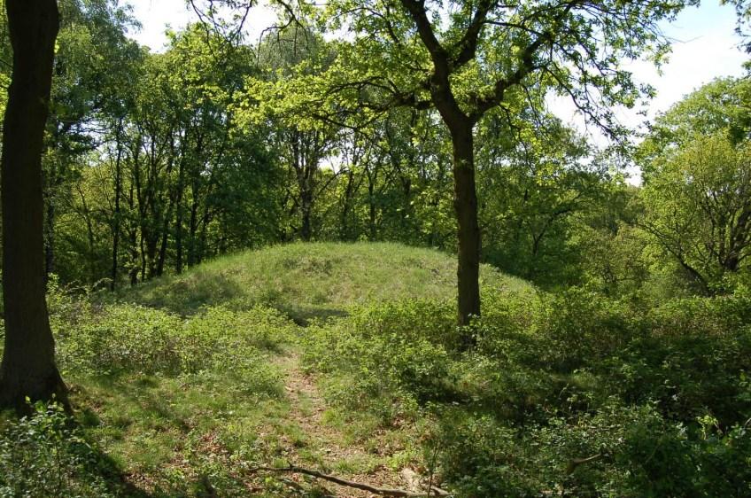 Neolithische grafheuvel bij Wolfheze